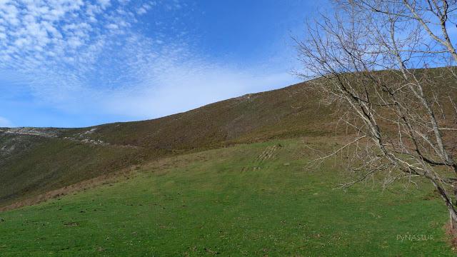 Pista Subida al Cerro del Tombu - Piloña - Asturias