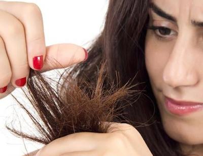 Cara Alami Mengatasi Rambut Rusak,Bercabang dan Patah
