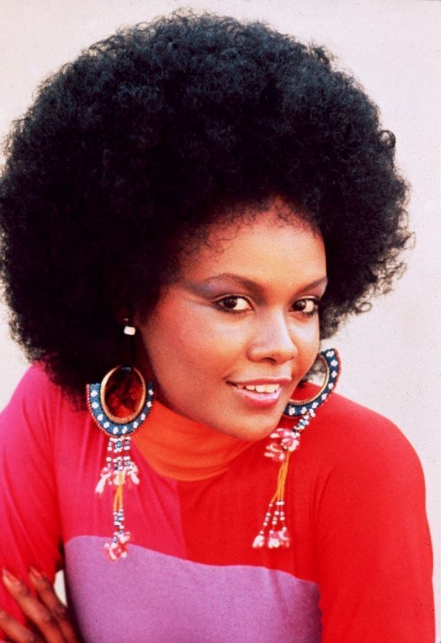 23 fascinating vintage photos of tamara dobson the model