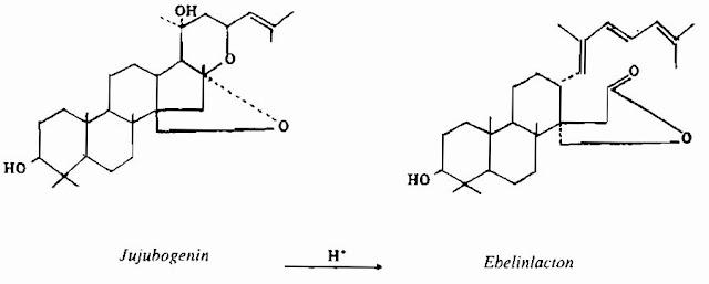 TP Hóa học TÁO TA - Zizyphus jujuba - Nguyên liệu làm Thuốc Ngủ, An Thần, Trấn Kinh