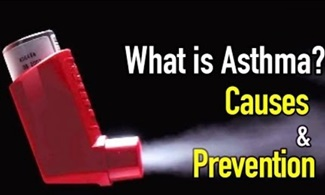 About asthma's causes and ways you can address triggers, alleviate symptoms, and avoid allergy attacks.