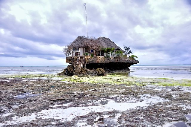 A Zanzibar Low Tide Moment