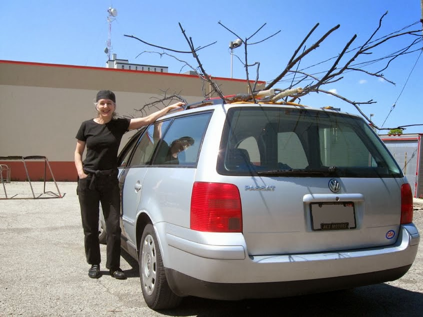 TRANSPORTING EXHIBIT TREE FORMS 2009