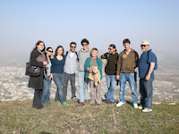 green olive tours group