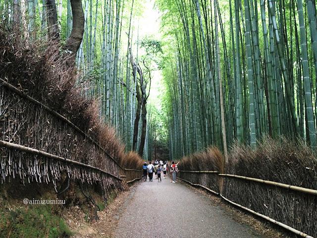 Arashiyama, Bamboo Forest Kyoto