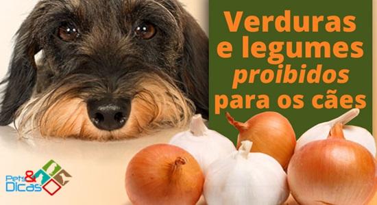 Verduras que cães não podem comer