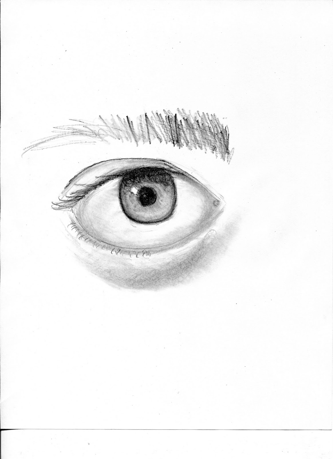 Art Of Drawing An Eye For Beginners