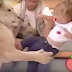 OMG! Watch terrifying moment lioness tried to eat baby on live TV...