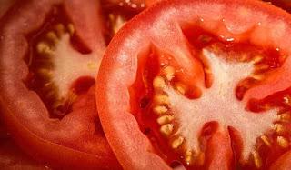 manfaat-tomat-untuk-ibu-hamil