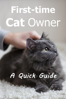 First-time Cat Owner's Guide  .