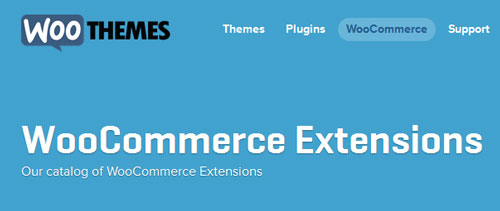 19 Woocommerce Extensions with Updates
