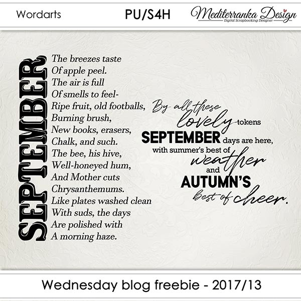 WINNER + WEDNESDAY BLOG FREEBIE - 2017/13