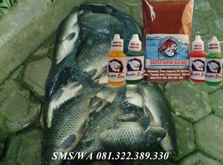 Essen Umpan Ikan Mas Kilo Gebrus
