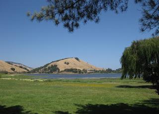View of Stafford Lake, Novato, Calfornia