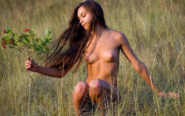 Загорелая, обнаженная, молоденькая, девушка, волосы, маленькая грудь, тело, ножки, поза, сидит, трава, поле, природа
