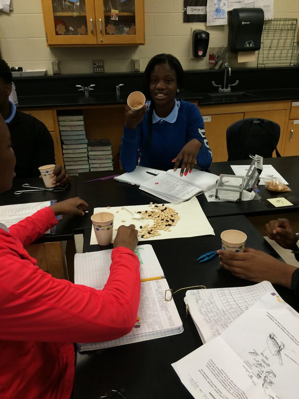 Mrs Greeley Howard S Biology Class Bird Beak Lab