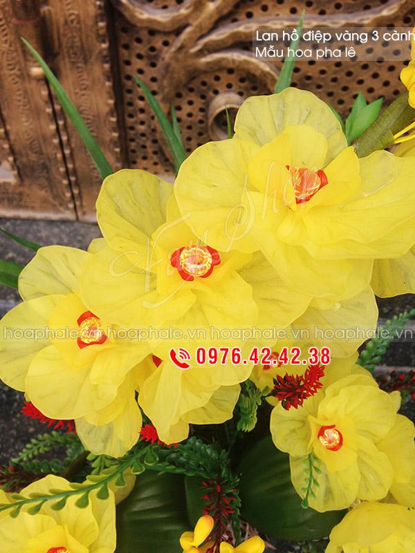 Mẫu hoa pha lê lan hồ điệp - Hoa pha lê