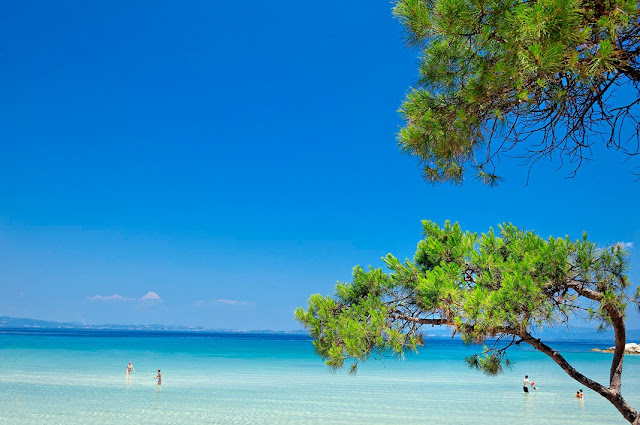 An eco philosophy resort in Halkidiki, Greece   243
