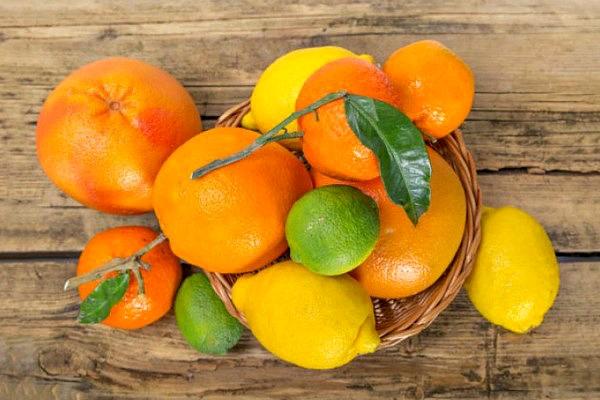 buah sitrus