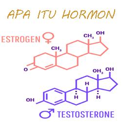 Pengertian Hormon dan Fungsinya