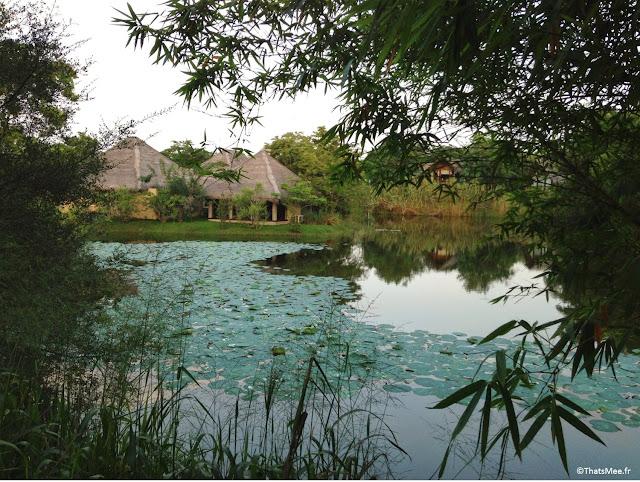 Eco-lodge Jetwing Vil Uyana Sri Lanka Sirigiya étang cabanes