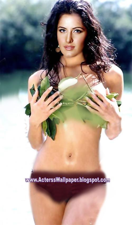 Katrina Kaif 2013 Hot Pics Katrina Kaif Sex 2014 Videos -5499