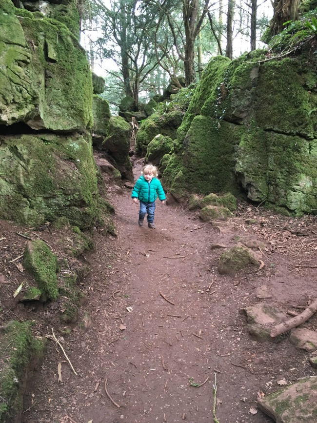 picture-of-toddler-on-narrow-path-between-rocks
