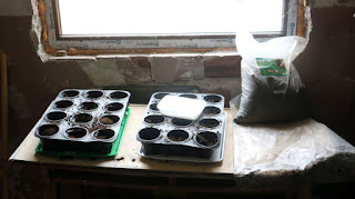 The potting table in the gardening room