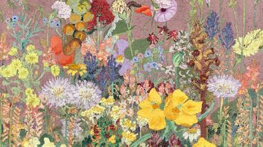 Flores silvestres del Mediterráneo según Cedric Morris
