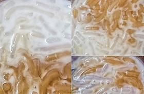 สูตรขนมไทยปลากริมไข่เต่า สุตรอร่อยหอมหวานมัน เอาไปสร้างอาชีพได้เลย