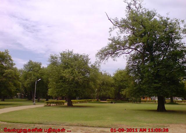 Darasuram Siva Temple Park