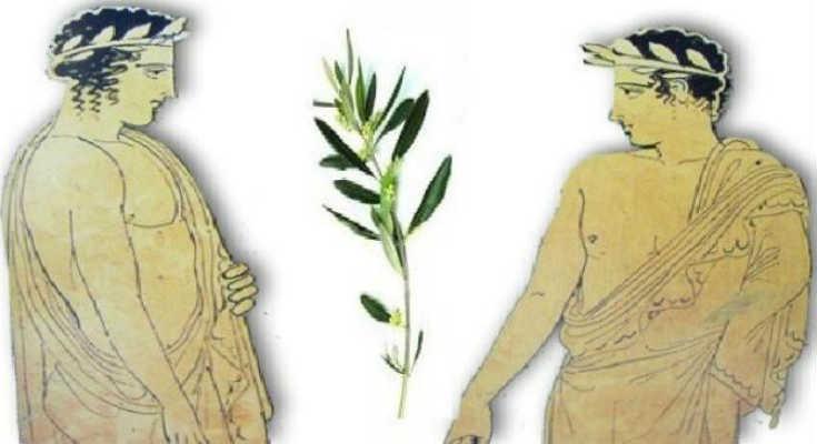 Ειρεσιώνη: Το Χριστουγεννιάτικο δέντρο των Αρχαίων Ελλήνων