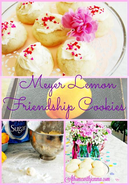 Valentine-cookies-gifts-treats-easy-tasty-simple-teas-party-jemma