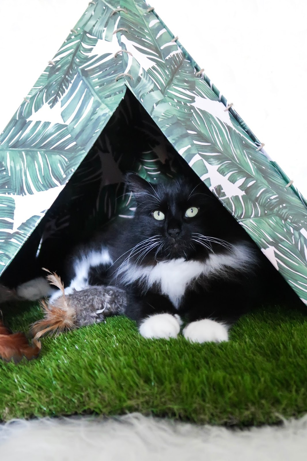 DIY Easy Cat Teepee