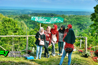 Wonder Hill Jojogan