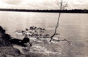Um entardecer no Rio Doce, ES, abril de 1950.