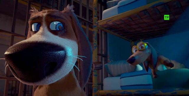 Hình ảnh phim Chú Chó Vượt Ngục