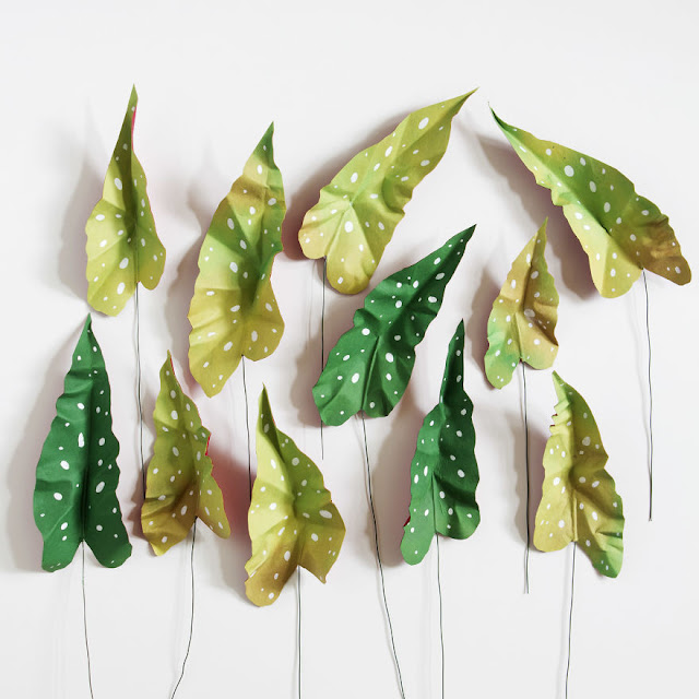 Paper plant by Corrie Beth Hogg