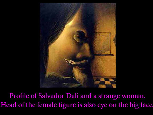face optical illusions 9