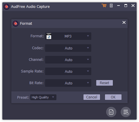 AudFree Audio Capture Format
