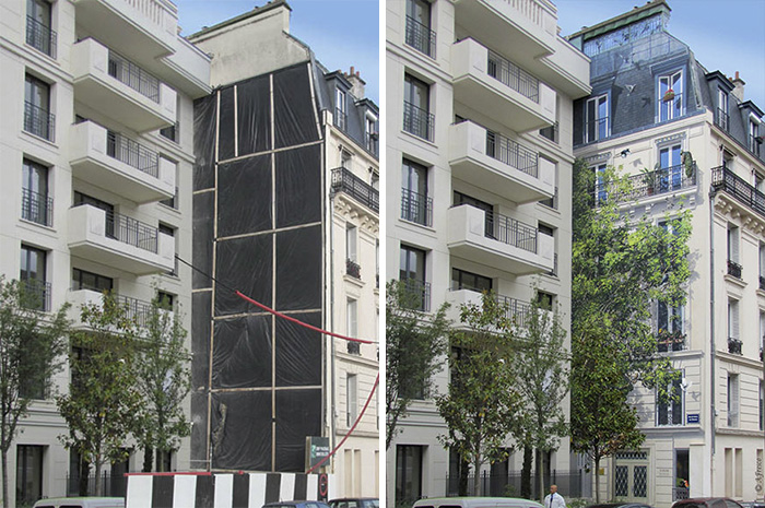 French Artist Transforms Boring City Walls Into Vibrant Scenes Full Of Life - L'arbre aux oiseaux