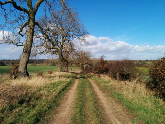 Picture taken of bridleway along Walk 33: West End Double Loop