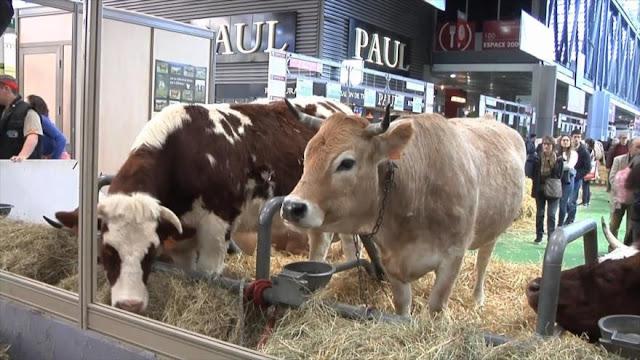 Los agricultores franceses afectados por la crisis política