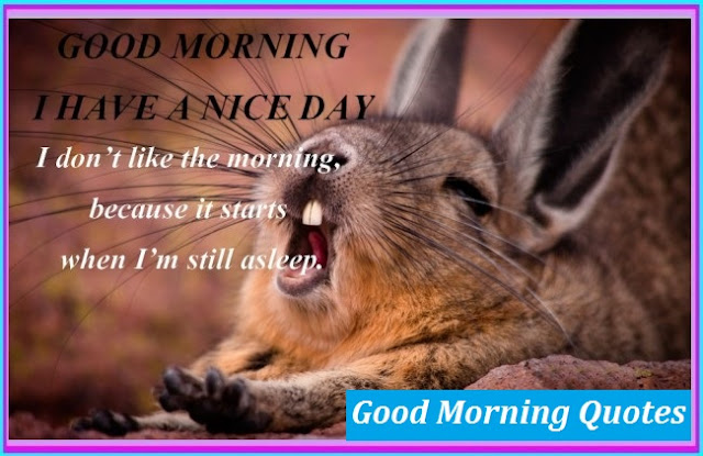 funny-good-morning-sms