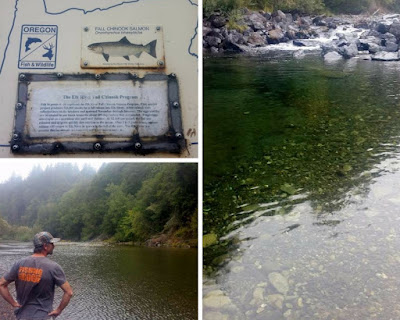 The-Elk-river-Oregon