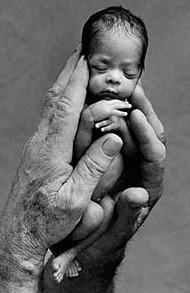 no al aborto,sobre el aborto,aborto,no aborto,aborto ley,ley contra aborto,no abortar,aborto bebe,aborto biblia,aborto cristiano,aborto muerte,no abortes