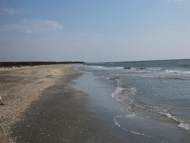 Za tabliczką rozciąga się dalszy kawałek plaży