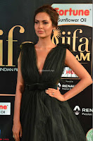 Esha Gupta in a Deep Neck Sleeveless Dark Green Gown at IIFA Utsavam Awards 2017     12.JPG