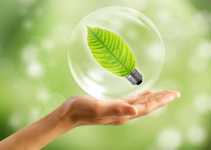 Développement durable : finalités, indicateurs et politiques