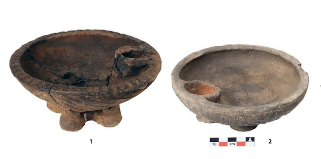 Scientists find seeds of domestic plants in the burial sites of ancient nomads